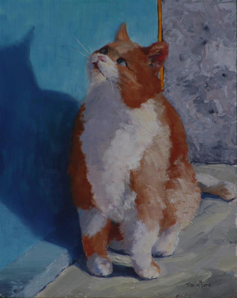 """Fat Cat in Vernazza"" original fine art by Sheila Marie"