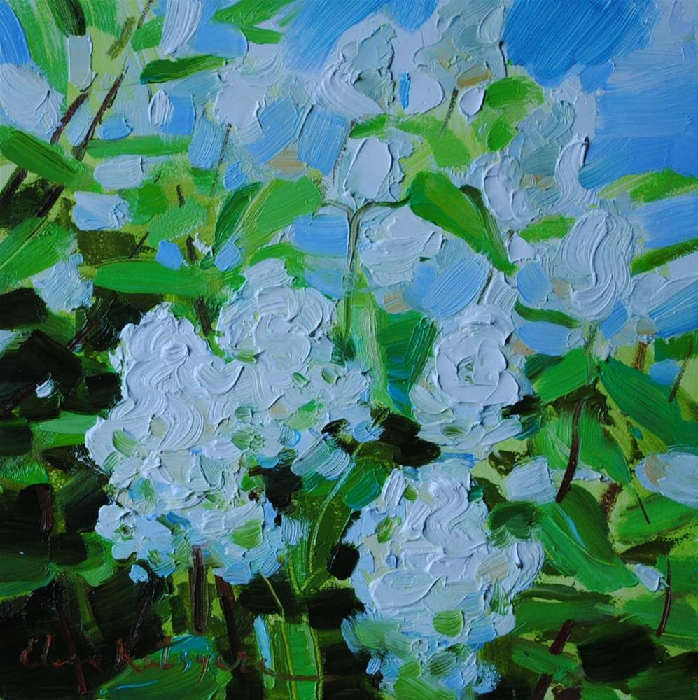 """White Lilac"" original fine art by Elena Katsyura"