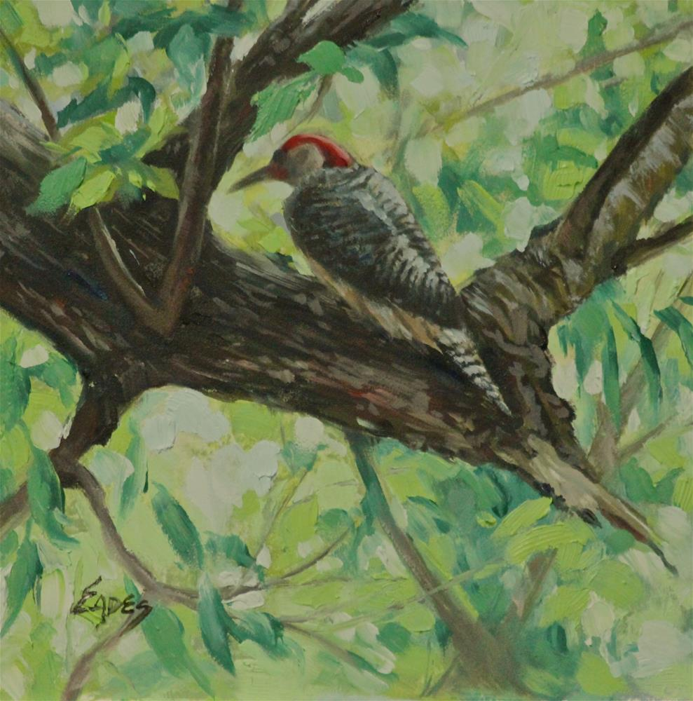 """Red Bellied Woodpecker 2"" original fine art by Linda Eades Blackburn"