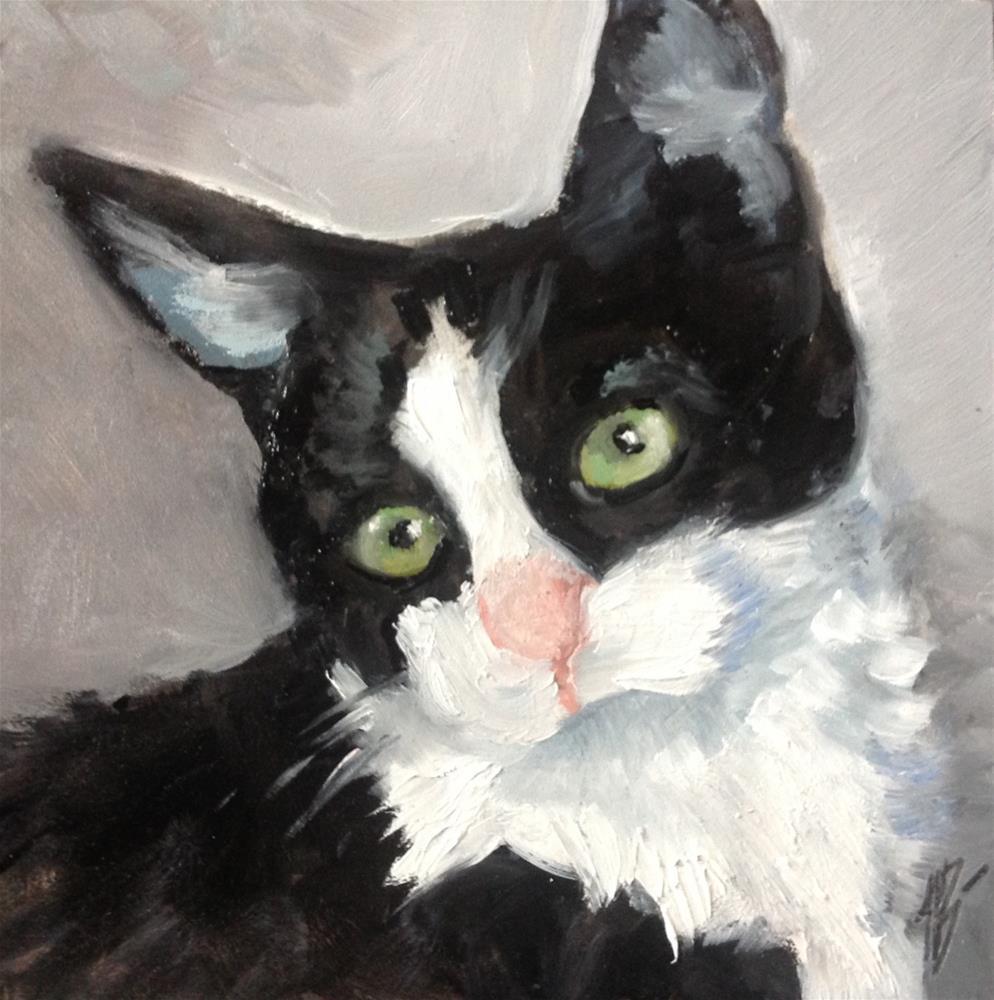 """""""Black and white Kitten"""" original fine art by Annette Balesteri"""