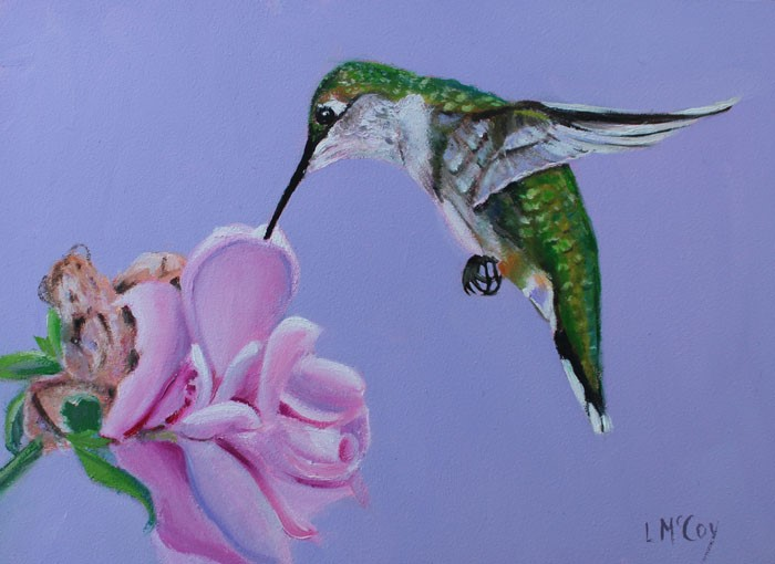 """Hummingbird and Rose of Sharon"" original fine art by Linda McCoy"