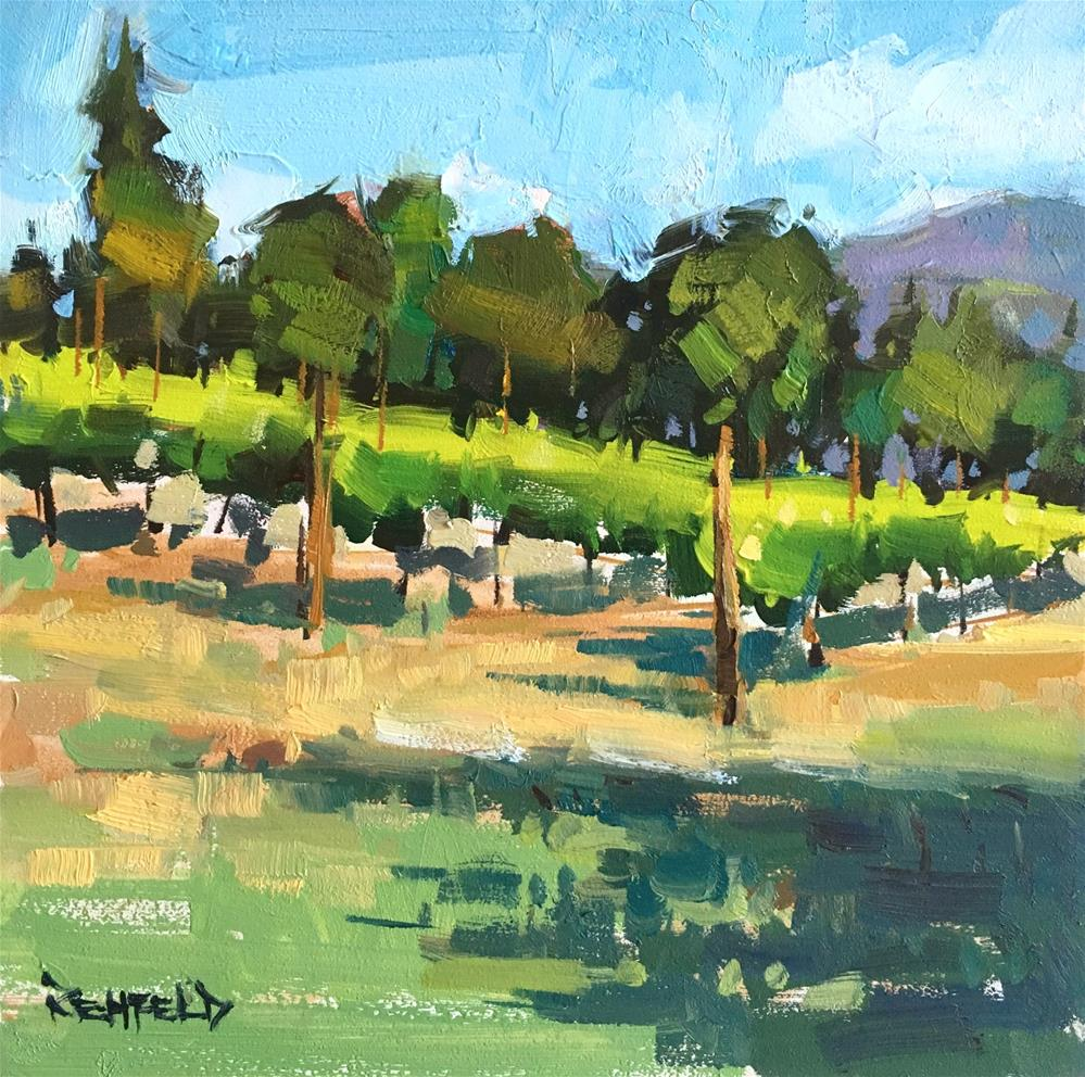 """Morning Shadows in the Vineyard"" original fine art by Cathleen Rehfeld"