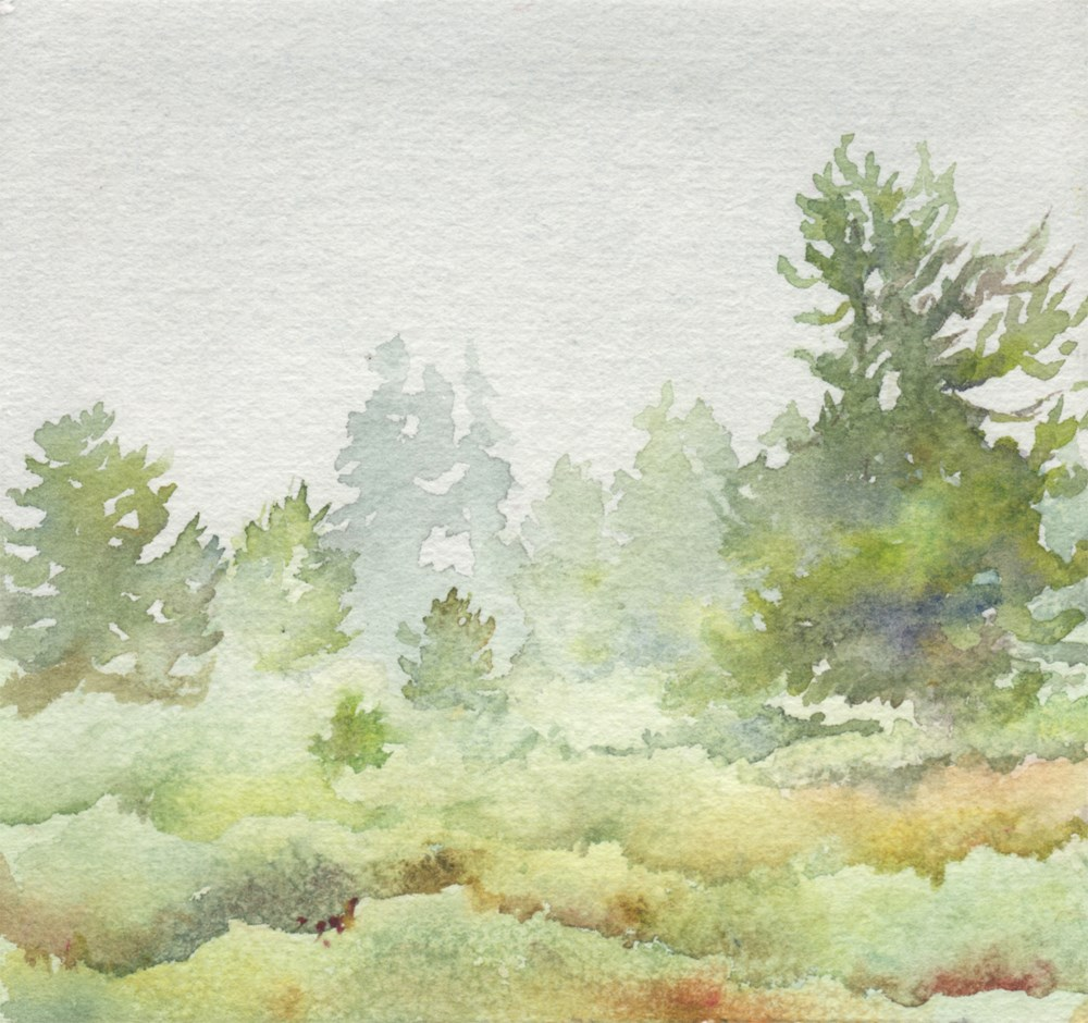 """Crane Flats"" original fine art by Carole Baker"