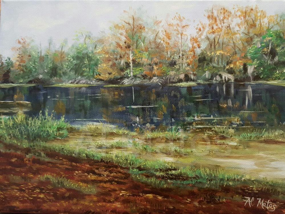"""Reflections at Blanchard Park"" original fine art by Al Matos"