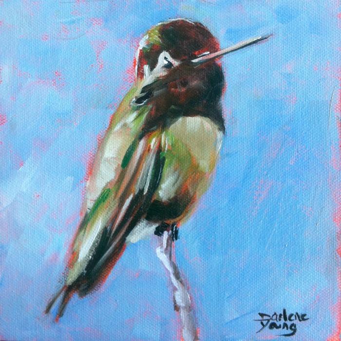 """Hummingbird, oil on canvas board, 6x6"" original fine art by Darlene Young"
