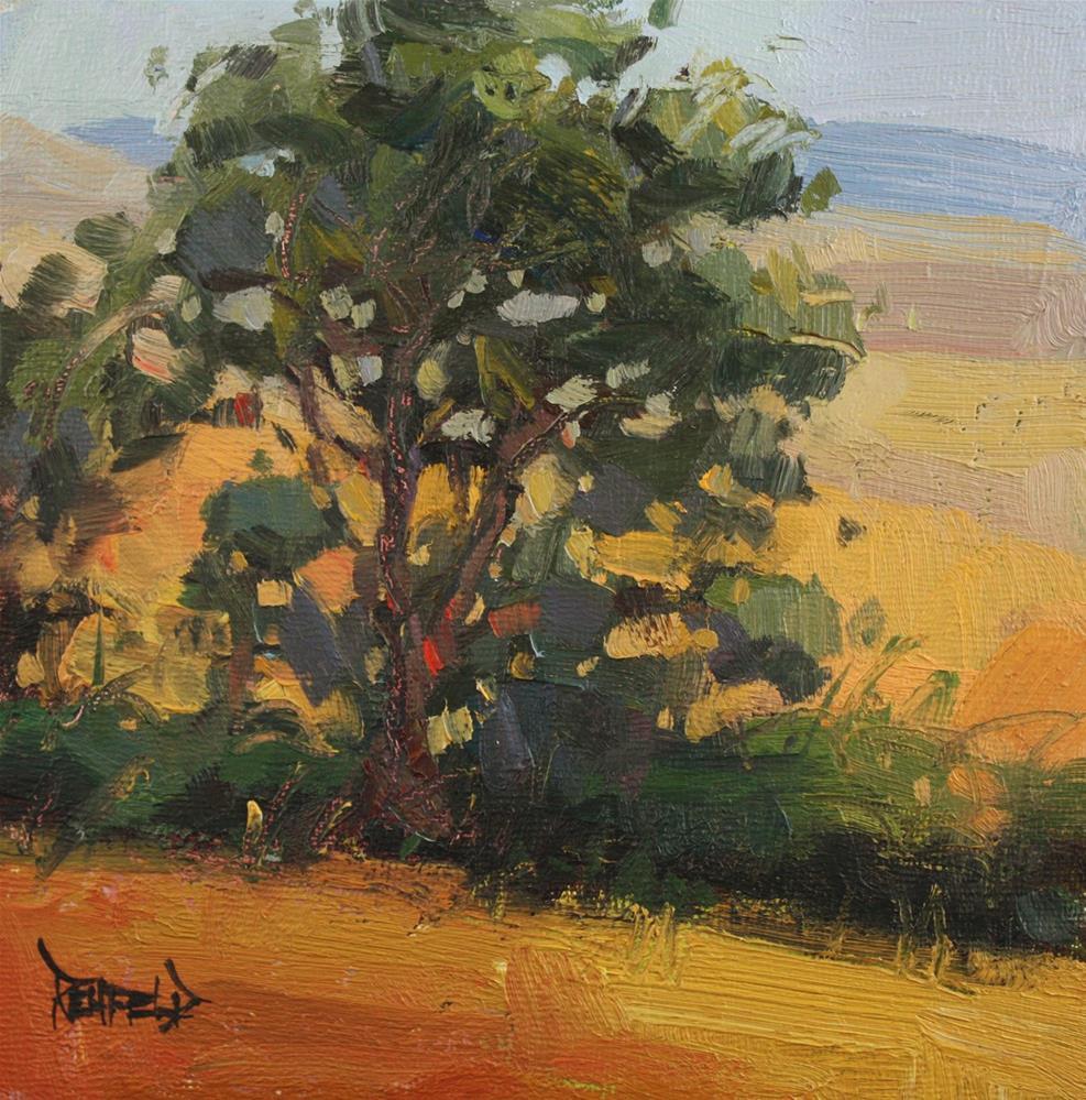 """The Dalles Mt Ranch Tree"" original fine art by Cathleen Rehfeld"