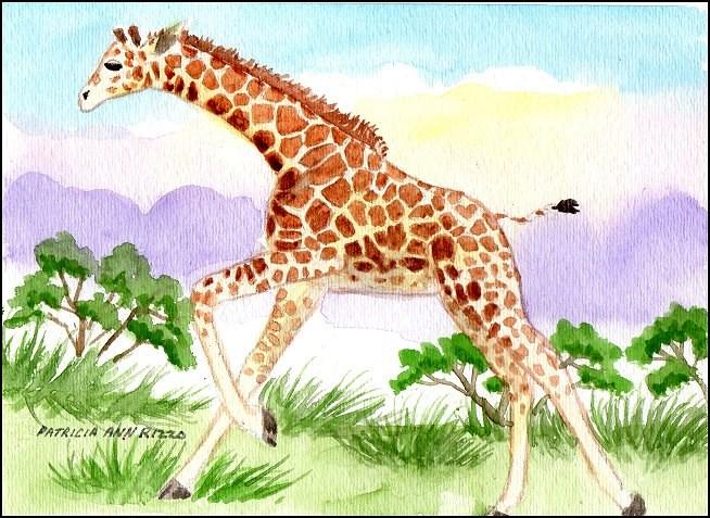 """Running Giraffe Calf"" original fine art by Patricia Ann Rizzo"