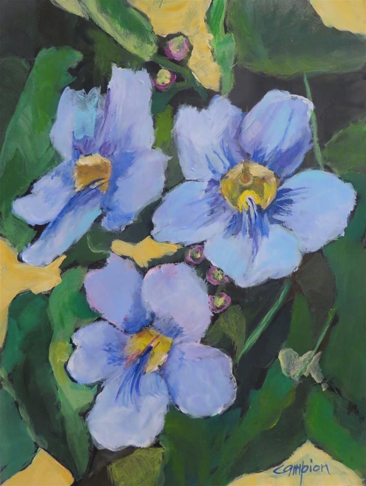 """""""662 Blue Sky"""" original fine art by Diane Campion"""