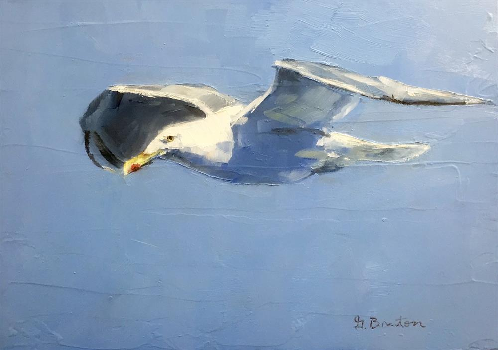 """Herring Gull"" original fine art by Gary Bruton"