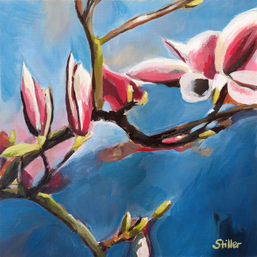 """2768 Magnolia Buds"" original fine art by Dietmar Stiller"