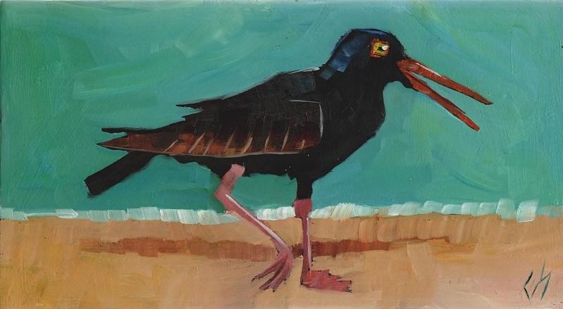 """Oyster Catcher"" original fine art by Elizabeth See"