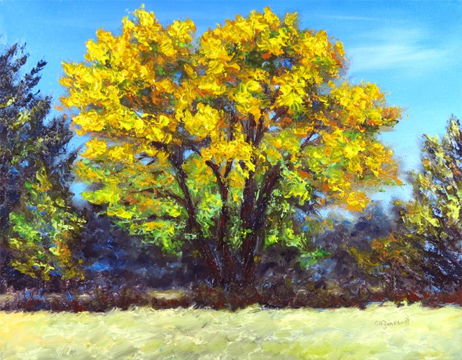 """Wild Yellow"" original fine art by Carol Zirkle"