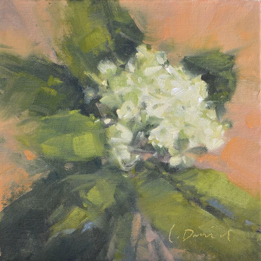 """""""Lily Hydrangea - Fifteen of 30 in 30"""" original fine art by Laurel Daniel"""