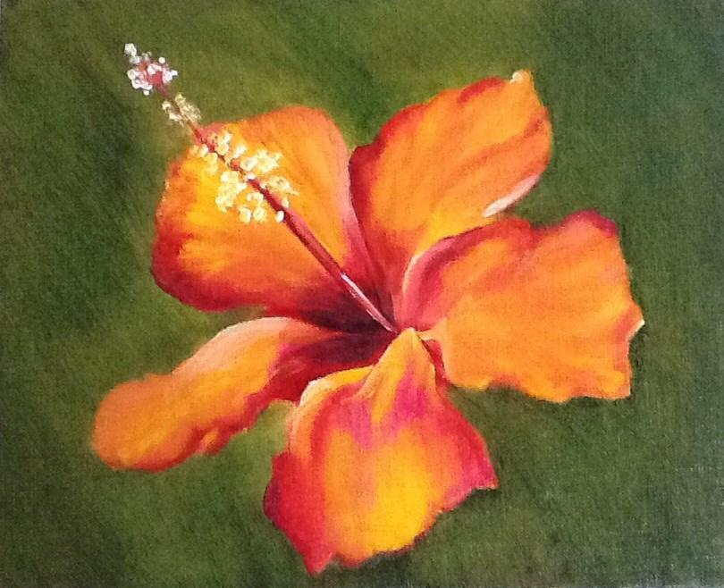 """Sunset Hibiscus"" original fine art by Dawn Brost"