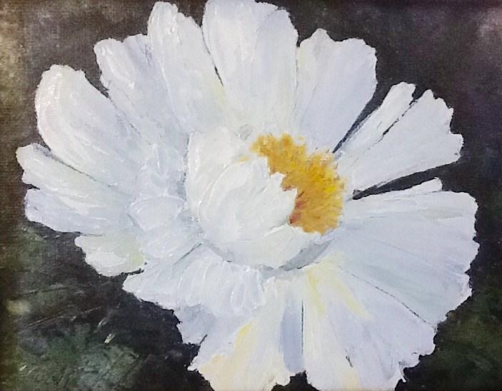 """Pure White"" original fine art by Bonnie Griffith"