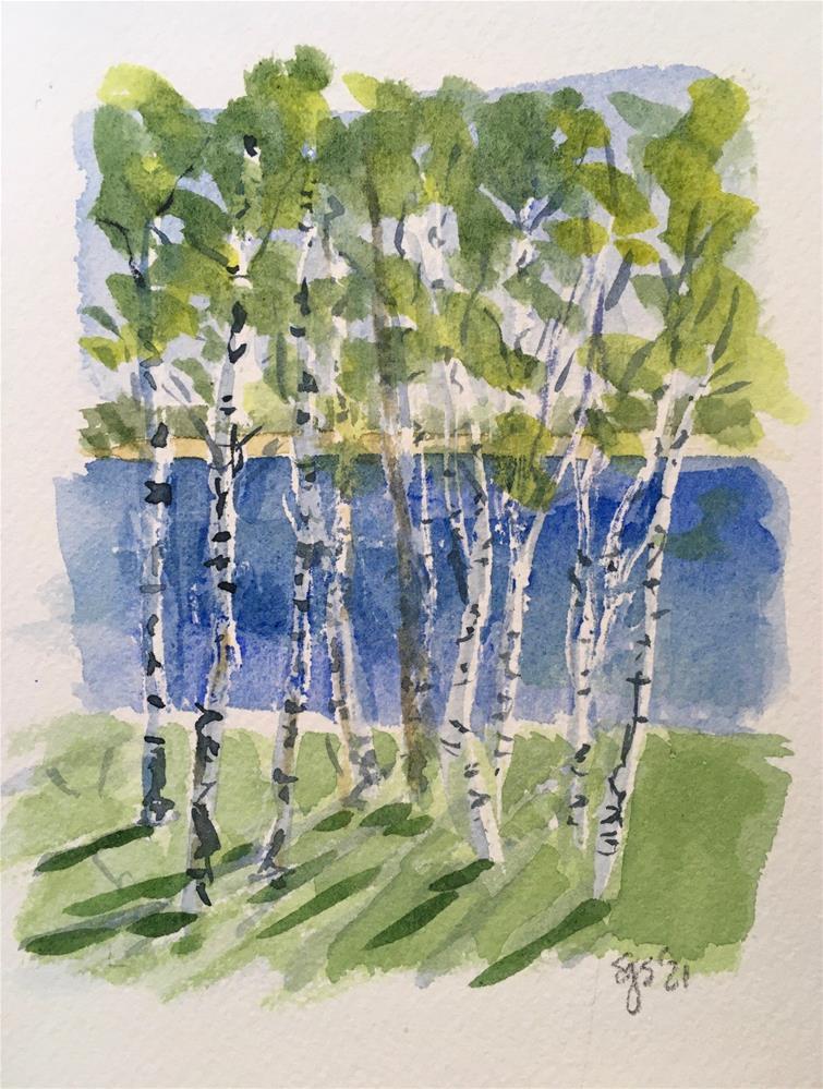 """Birch Grove"" original fine art by Shari Goddard Shambaugh"