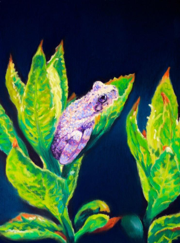 """""""Tree Frog in Hydrangea Leaves"""" original fine art by Jill Bates"""