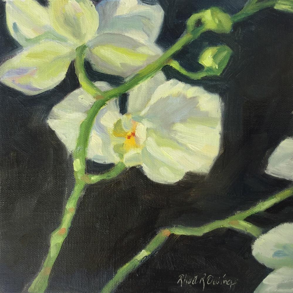 """""""Blooming Orchid"""" original fine art by Rhett Regina Owings"""
