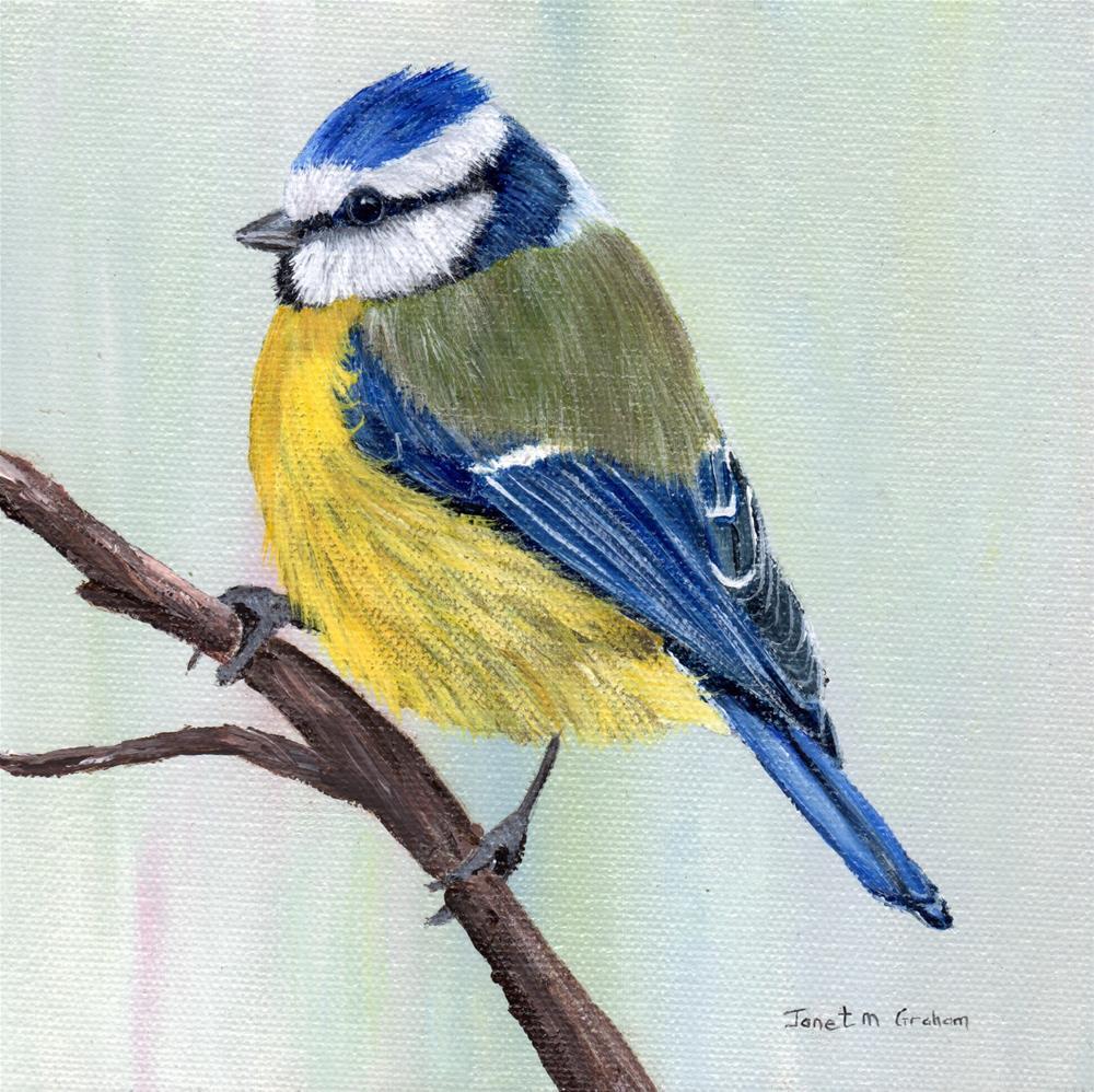 """Blue Tit"" original fine art by Janet Graham"