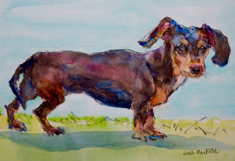 """little friend"" original fine art by Nora MacPhail"