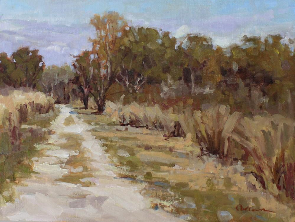 """""""Almost a Road"""" original fine art by Colleen Parker"""
