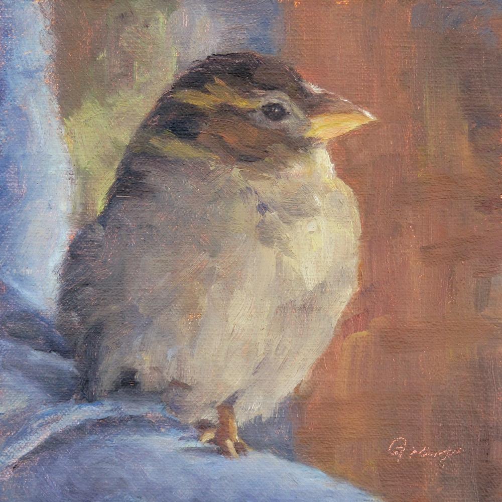 """""""Tobi the Sparrow No.2"""" original fine art by Naomi Gray"""