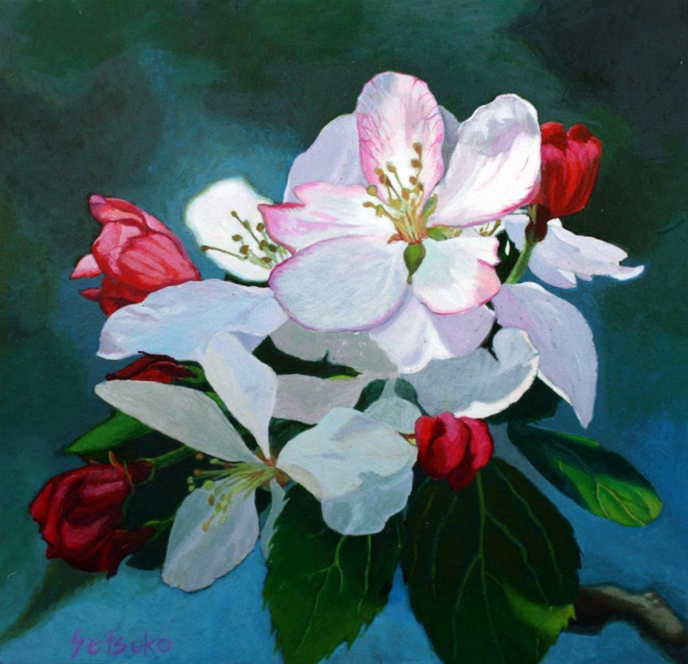 """Apple Flowers"" original fine art by Setsuko Lawson"