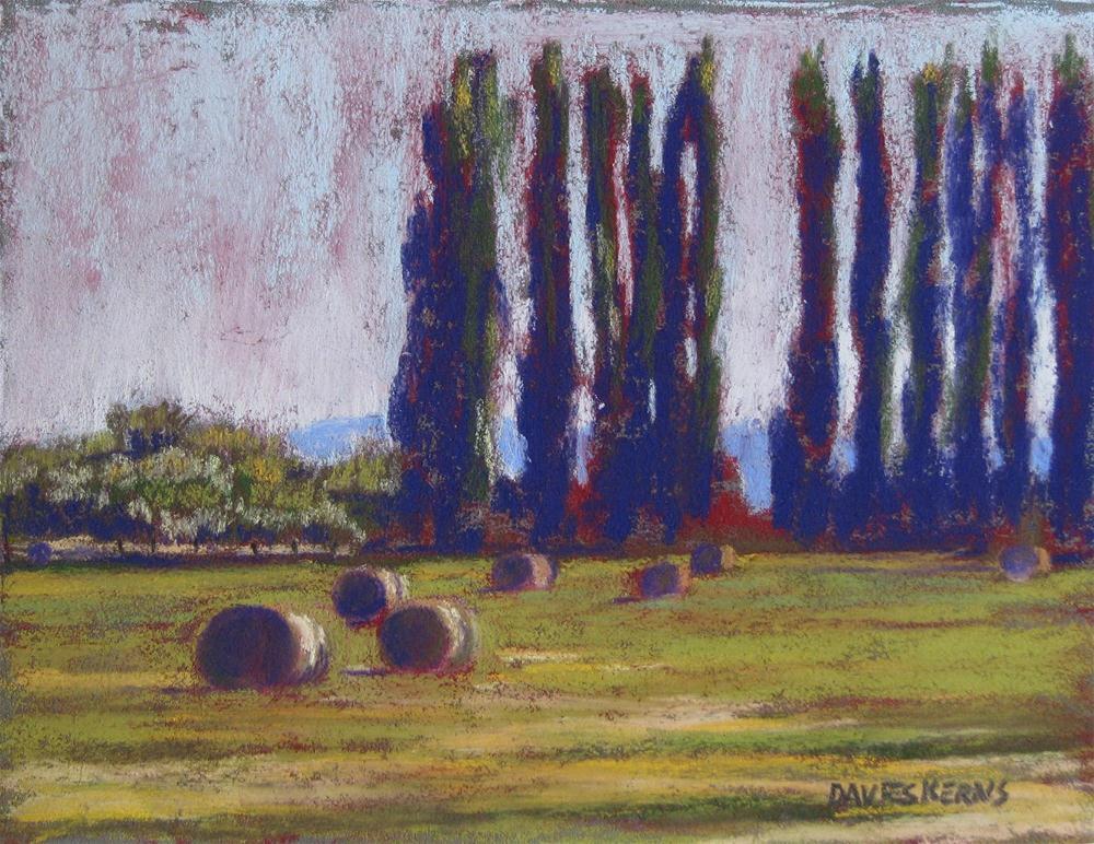 """summer poplars"" original fine art by Mary Davies Kerns"