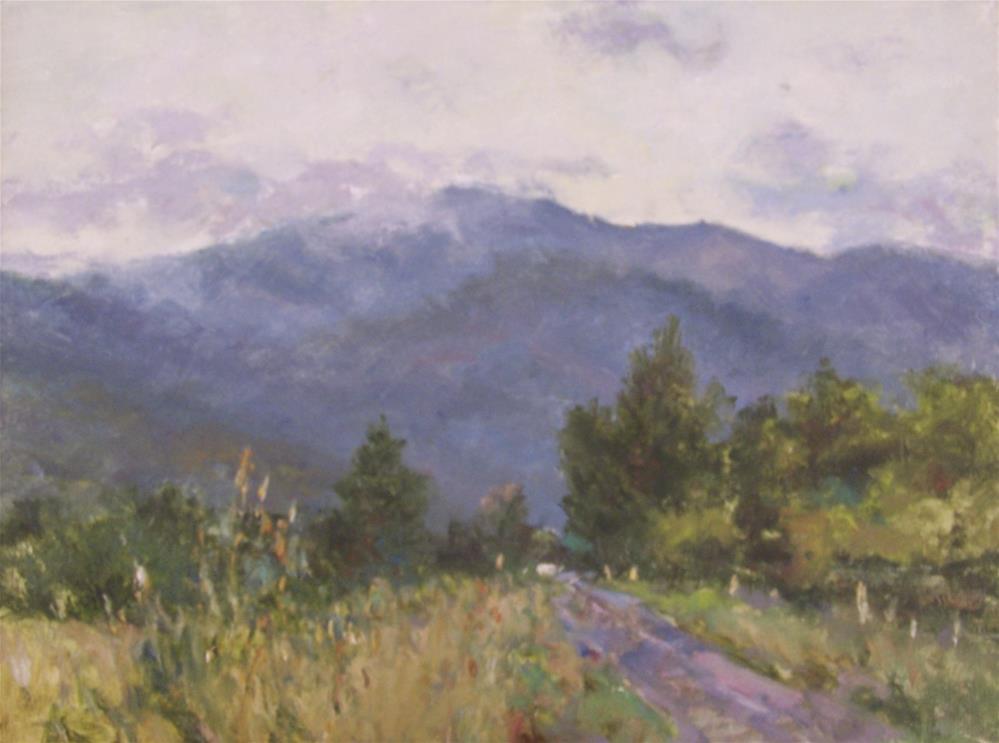 """Across Australia-Northern Victoria"" original fine art by John Shave"