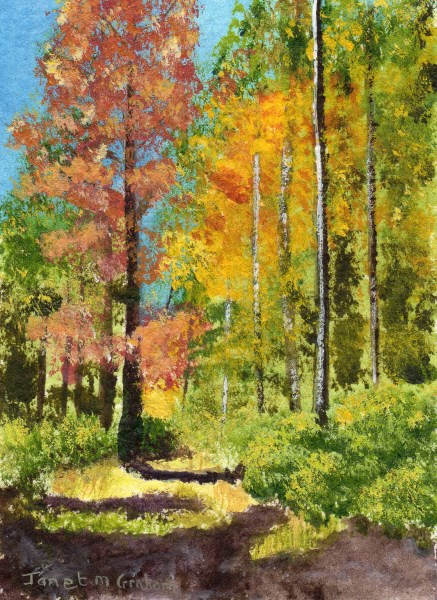 """Autumn Trees ACEO"" original fine art by Janet Graham"