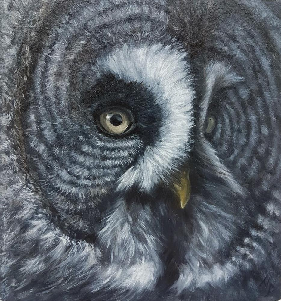 """Great grey owl "" original fine art by Nikolina Primorac"