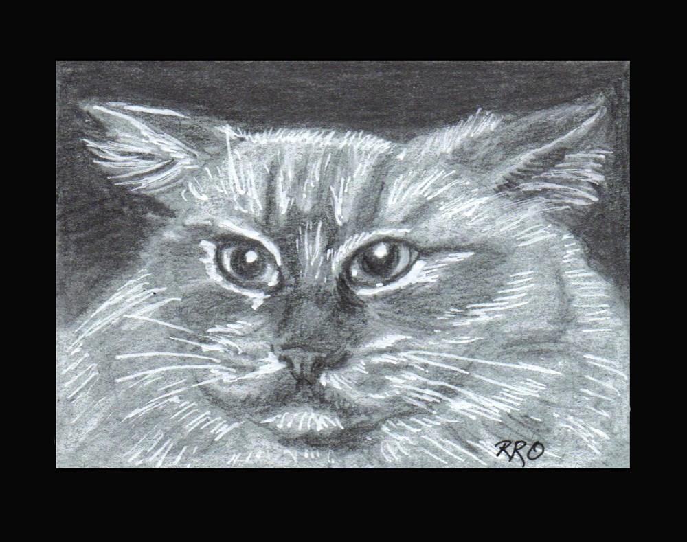 """Angry Kitty"" original fine art by Rhett Regina Owings"