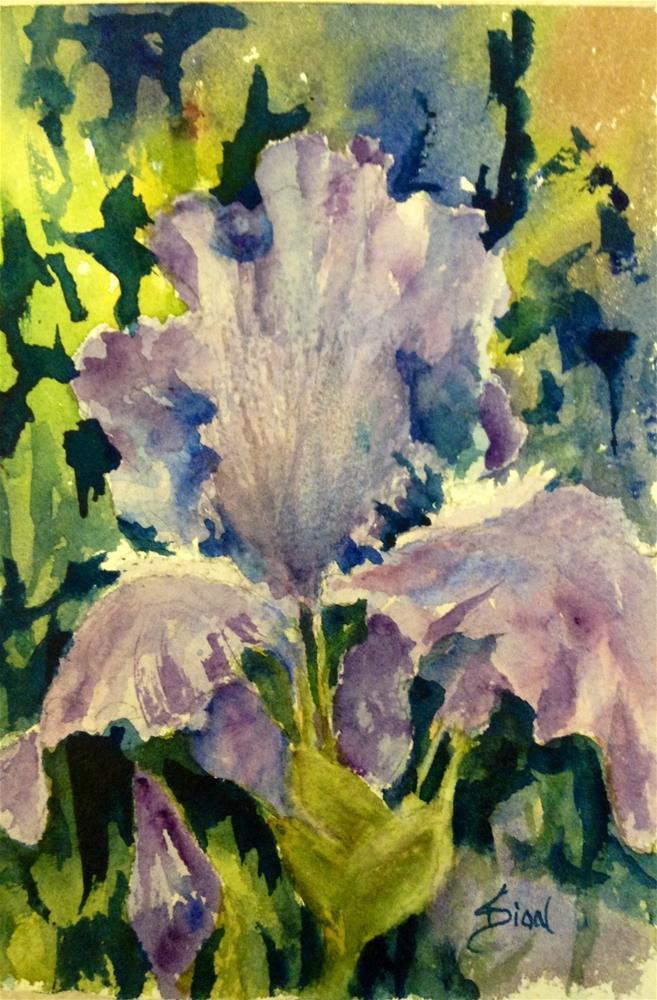 """Splendor"" original fine art by Sue Dion"