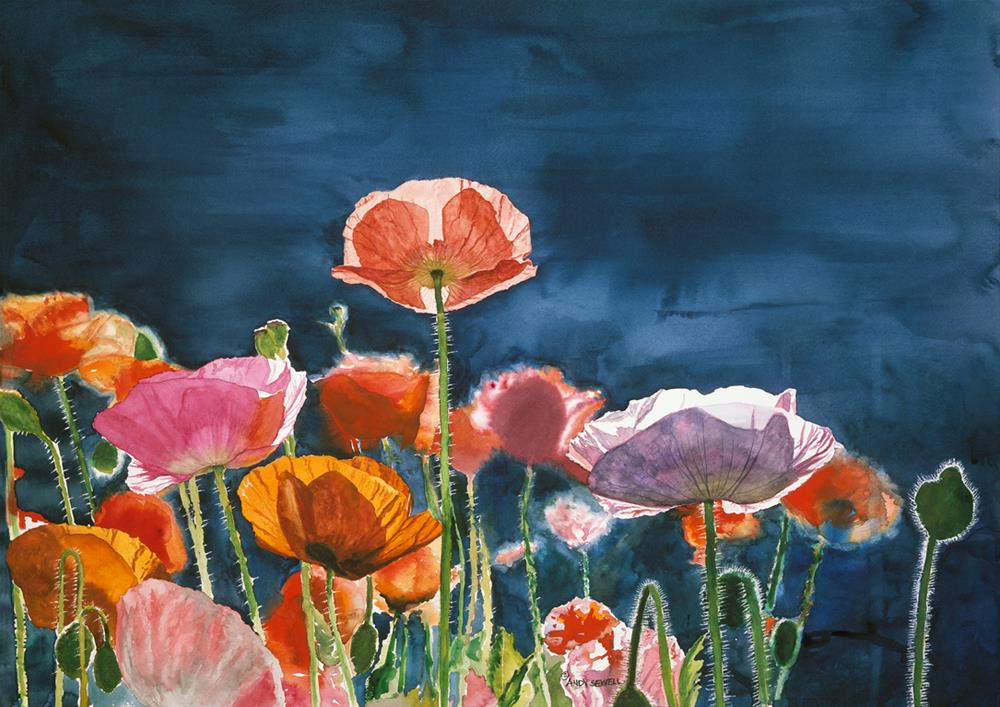 """""""Poppy Morning"""" original fine art by Andy Sewell"""