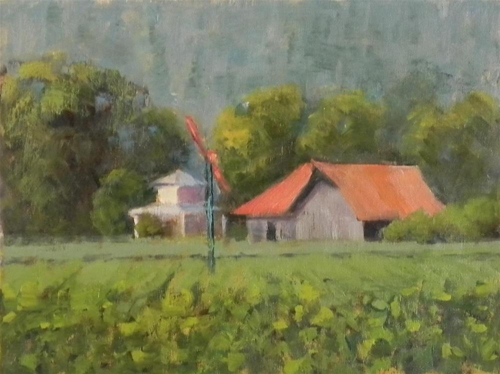 """Sonoma Vineyard"" original fine art by Barbie Smith"