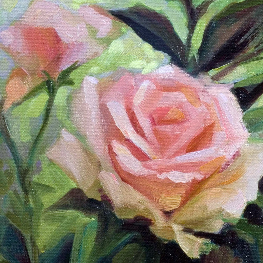 """Pink Rose in Shadow"" original fine art by Mary Mulvihill"