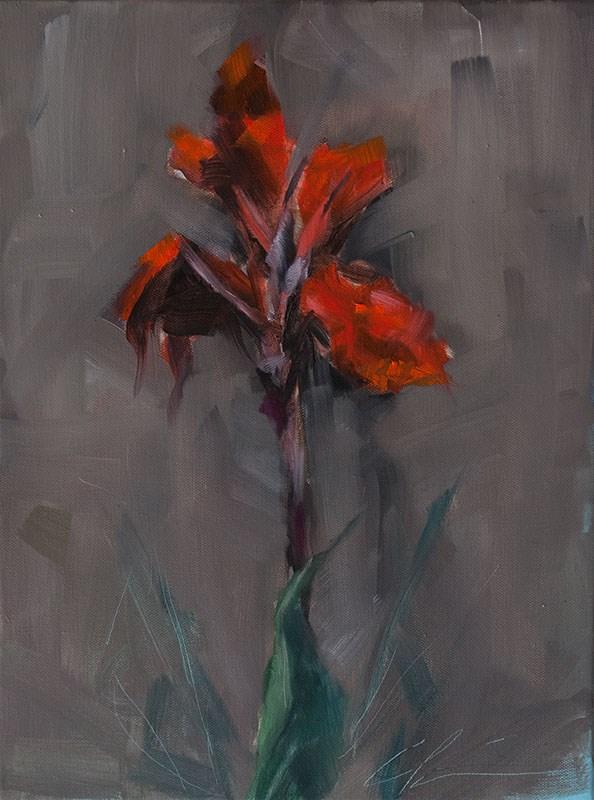"""Fading Canna"" original fine art by Clair Hartmann"