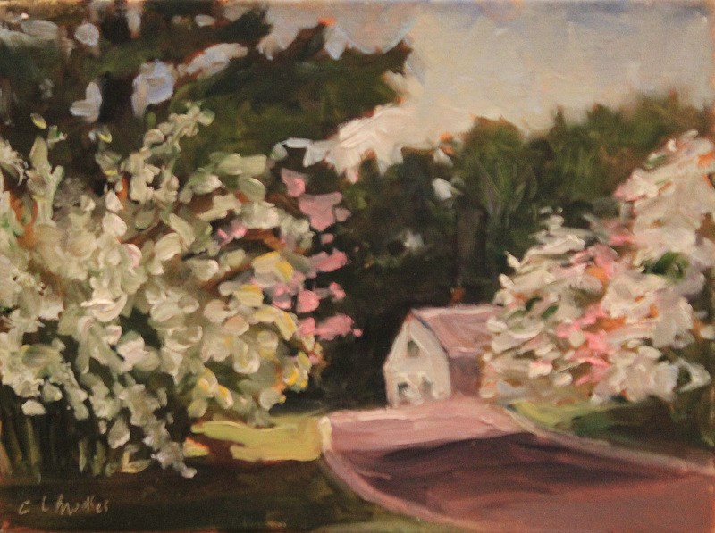 """Dogwood Lane"" original fine art by Claudia L Brookes"