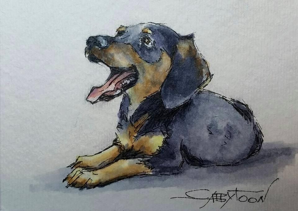 """Shelby(ACEO)"" original fine art by Gabriella DeLamater"
