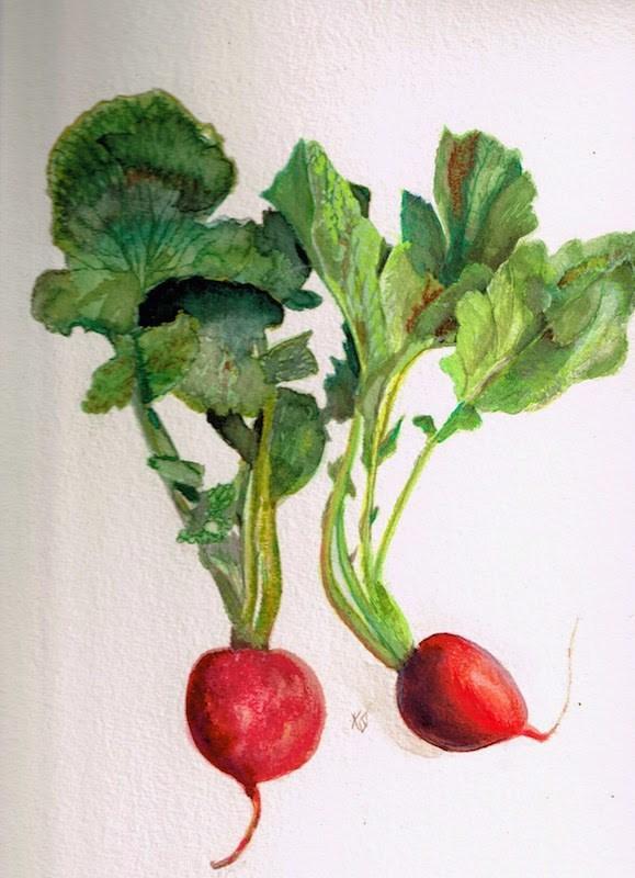 """Radish multiplied"" original fine art by Karen Stitt"