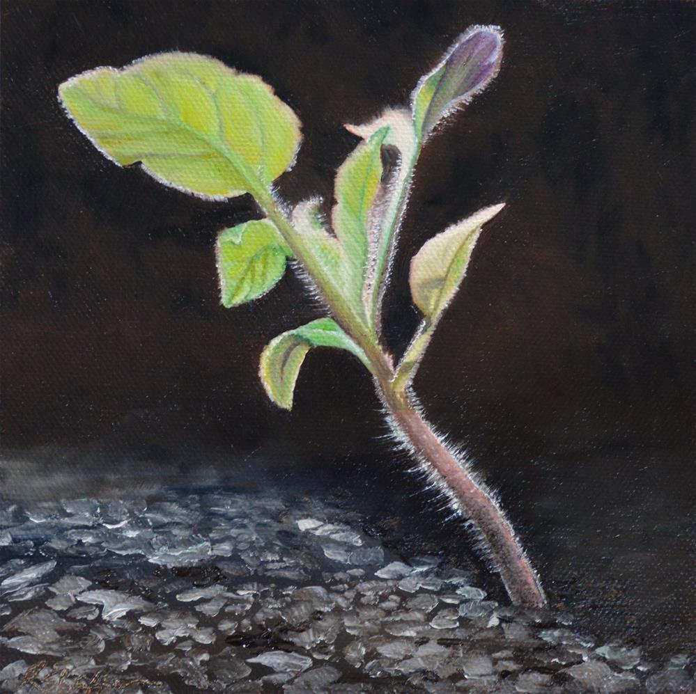 """Grow (reaching for the light)"" original fine art by Renay Shaffer"