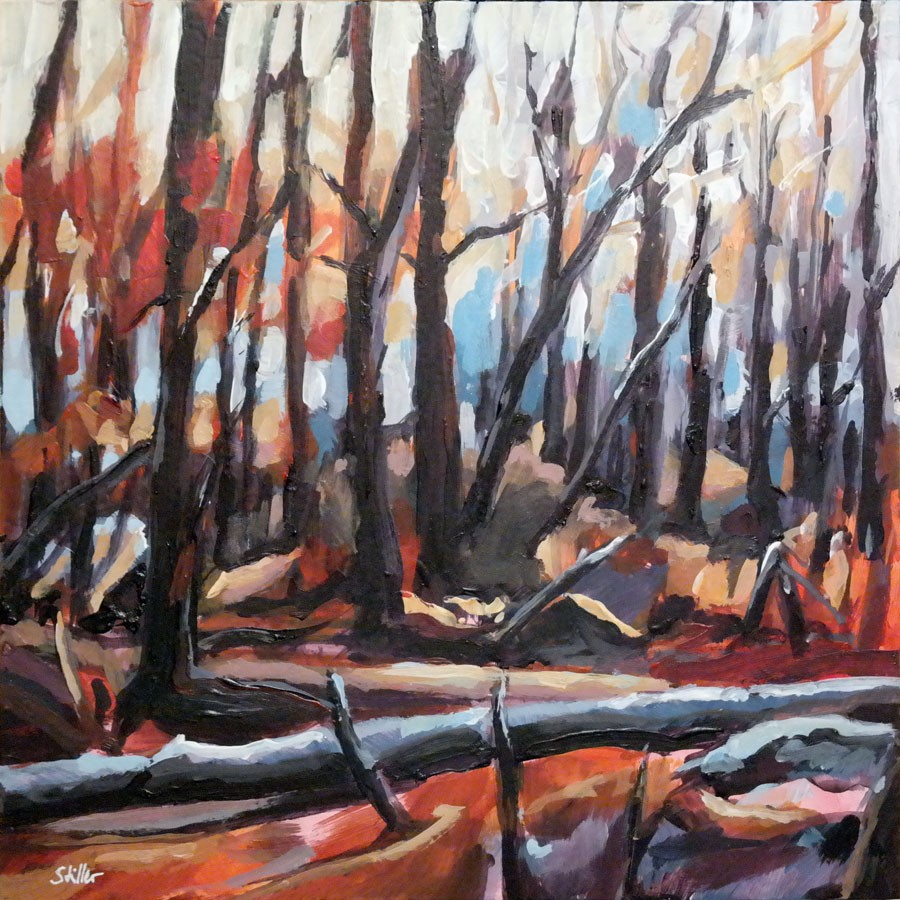 """November Wood Mood"" original fine art by Dietmar Stiller"