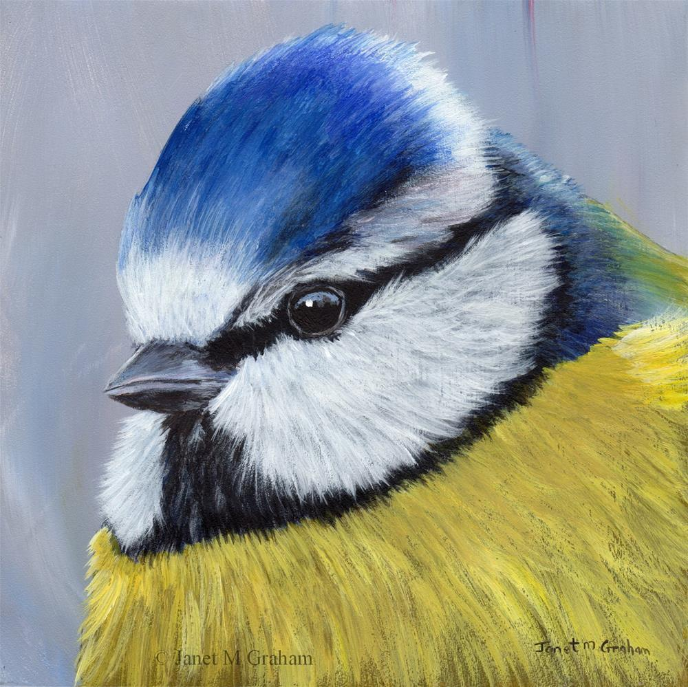 """Blue Tit No 2"" original fine art by Janet Graham"
