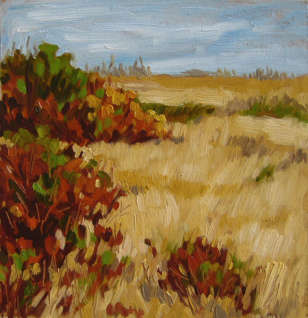 """Natural Grasslands"" original fine art by Nicki Ault"