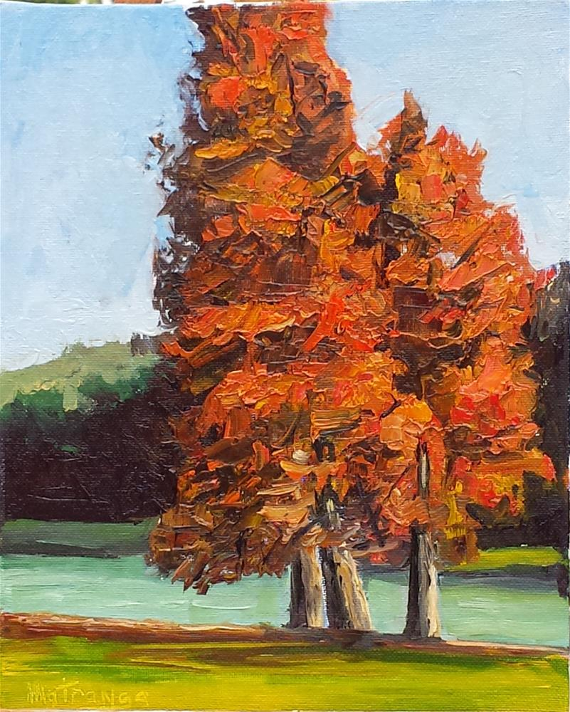 """Fall Glory"" original fine art by Patricia Matranga"