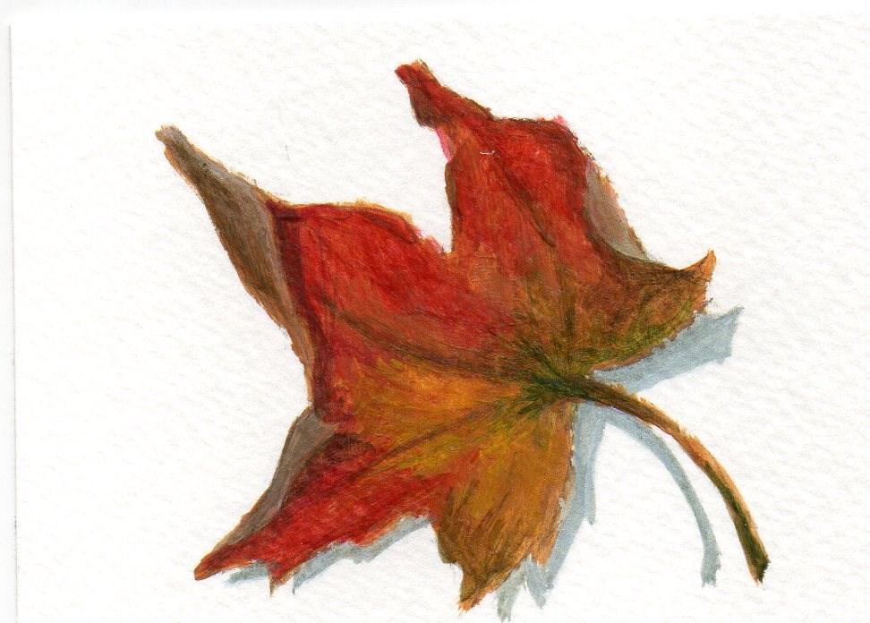 """""""Fallen  Leaves 5"""" original fine art by Debbie Shirley"""