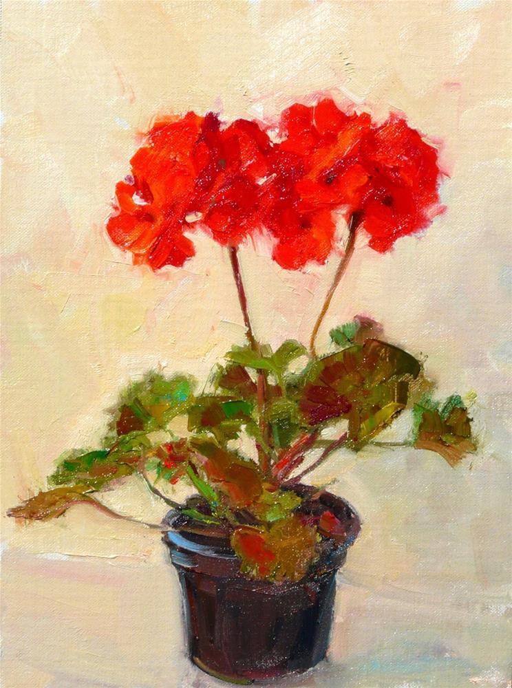 """Double Geranium,still life,oil on Linen canvas,12x9.price$300"" original fine art by Joy Olney"