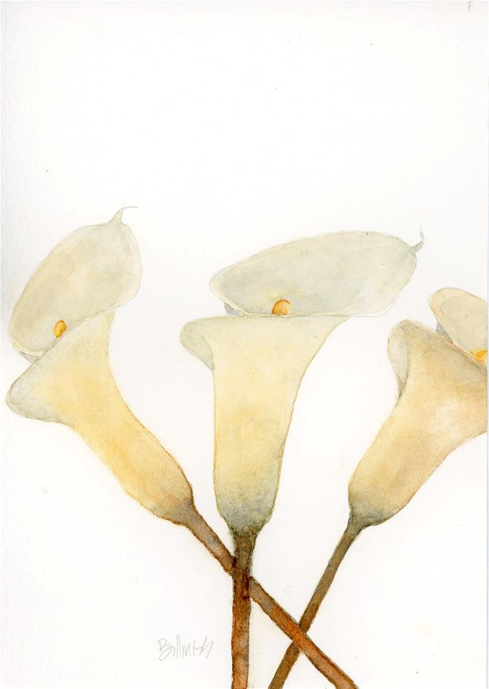 """Calla Three Study"" original fine art by Susanne Billings"