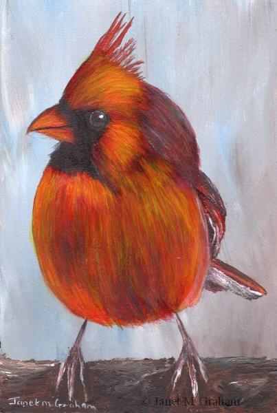 """""""Cardinal"""" original fine art by Janet Graham"""