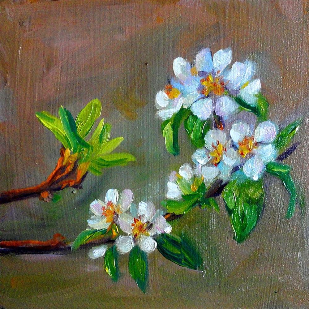 """Pear Blossoms"" original fine art by Cietha Wilson"